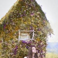 История одного дома :: Евгения Касьяненко