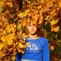 Осень пришла,осень золотая....... :: Алексей Ревук