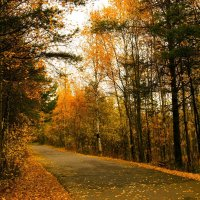Осень на Яграх :: Иван Клещин