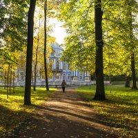Осень в Пушкине :: Valerii Ivanov