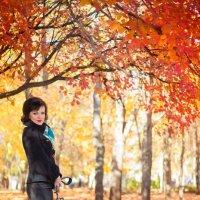 Краски осени :: Dina Ross