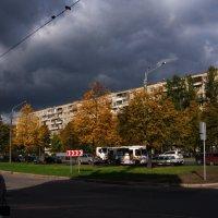 тучи над городом встали........ :: Валентина Папилова