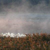 Туман над Истрой :: Svetlana27