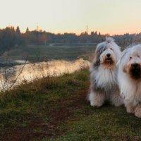 Девочки на прогулке :: Лариса Батурова