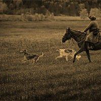 ...На охоту :: Виктор Перякин
