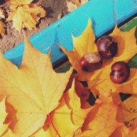 Осень :: Алина Зангиева