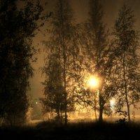 Все как в тумане, ХА, так оно и есть) :: Татьяна Носкова