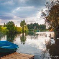 Прекрасная осень в Сартаково :: Мария Бизунова