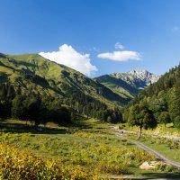 Вид на Альпийские луга :: Андрей Гриничев