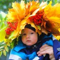 Осень к нам приходит :: Александра К