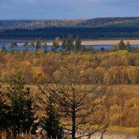 Осень - без конца и без края... :: Galina S*