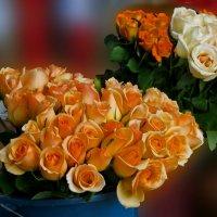 Царство роз :: Наталья Джикидзе (Берёзина)