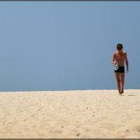 Долгая дорога к морю :: DimCo ©