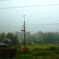 дождь :: Mary Коллар