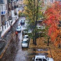 Первый снег :: Татьяна Губина