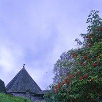 Старая крепость на реке Волхов :: NikOl .