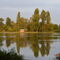 Пионерское озеро :: Olga Pomozova