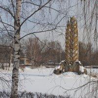 Золотой колос :: Владимир Лисаев