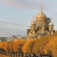Нежная осень в городе :: Вера Моисеева