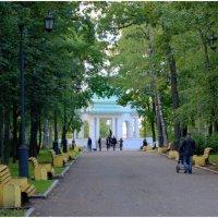 В парке. :: Андрей Русинов