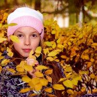 Осень :: Юрий Замараев