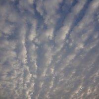 Небо в облаках :: Анастасия Вышемирская