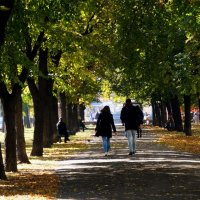 Киев. Осень 2014 Фото №6 :: Владимир Бровко