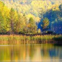 Горное озеро :: Николай Дементьев