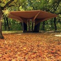 Осень :: Игорь Kуленко