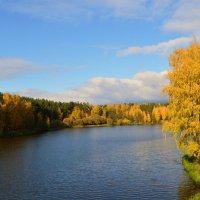 Очарование осени златой... :: Борис