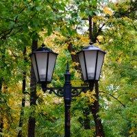 Парк, осень... :: Михаил MAN