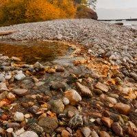 Осень утекает... :: Ольга Литвинцева