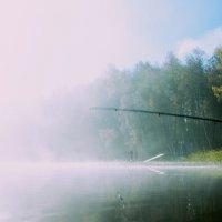 Утро. Озеро. Туман. Рыбалка. :: Михаил ЯКОВЛЕВ