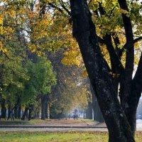 Что такое осень 2....... :: Kliwo