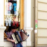 Я играю на гармошке :: Наталья Джикидзе (Берёзина)