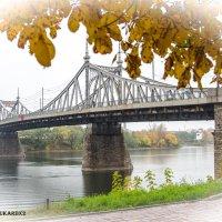 Осень в Твери :: Serega Alukard X2