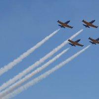 Пилотажная группа «Русь», Aero L-39 Albatros :: Андрей Lyz
