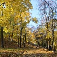Александровский сад 2 :: Анна -