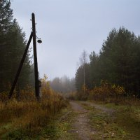 Заброшенная дорога :: Sergey Apinis