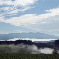 Леса оделись синей тьмою, туман гуляет над землёю... :: Olga