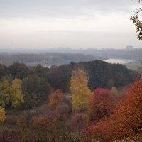 туманная осень :: Эльмира Суворова