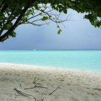 Мальдивы (перед дождем) :: Irina Shtukmaster