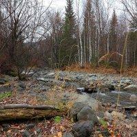 Осенний ручей.  8 :: Николай Елисеев