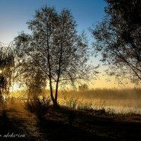 ***Утром солнышко проснулось... :: Allekos Rostov-on-Don
