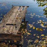 Опять про осень. :: Эдуард Пиолий