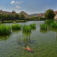 Praha :: Dorosia
