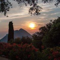 Sunset on Corfu :: Татьяна Черных