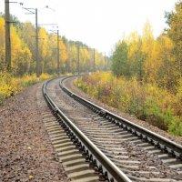Уходит осень :: Николай Танаев