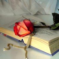 Натюрморт с розой. :: nadyasilyuk Вознюк