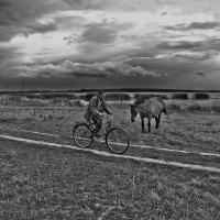 Успеть до грозы :: Сергей Михайлов
